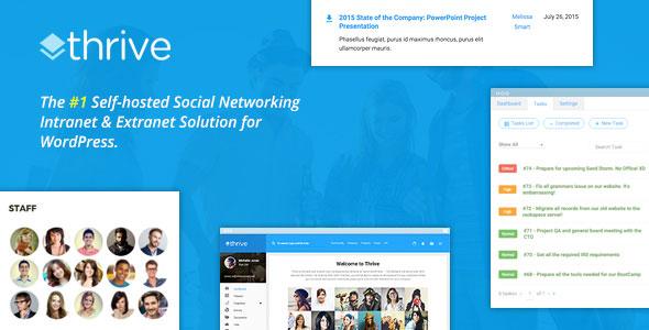 Thrive v2.1.0 - Intranet & Community WordPress Theme - vestathemes ...