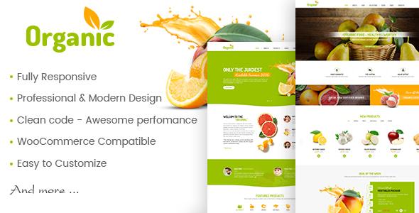 AmyOrganic v1.0.2 – Organic and Healthy Theme for WordPress ...